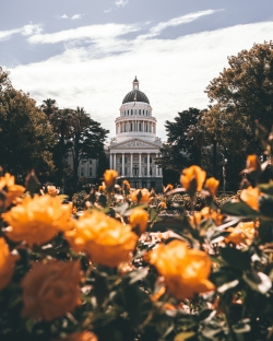 Photoshop Contest - California State Capitol (2 Entries)